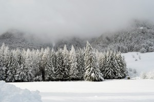 winter-1055467_640
